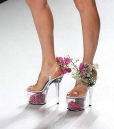 Interesting, isnt it? Looks a bit like forest fairy shoes :)