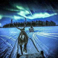 Lapland. Finland.