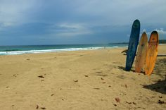 playa cocles surfs up   - Costa Rica