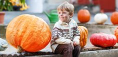 The best fall festivals for family fun in Calgary.