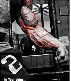 Masse aufbauen mit Muskelaufbau Grundübungen