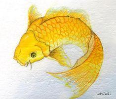 """_  2016_14  #황금잉어 #어해도  중국에서는 물고기가 노니는 그림은 """"집안이 보물로 가득찬다""""라는 뜻을 나타낸다.  이유는 물고기는 밤낮으로 눈을 감지 않아서 귀중품을 잘 지킨다는 뜻에서 부귀를 훔쳐가지 못하게 하는 감시자로써 부를 상징하며 물고기 그림중에서도 주종을 이루는 잉어는 출세와 길상을 뜻한다고 한다.  오만가지 좋은 뜻은 다 있길래 한번 그려보았다.  기회가 되면 꼭 전문적으로 동양화 배워보고 싶다.  _  #BYJURI #pensketch #pendrawing #drawing #dailydrawing #일러스트 #art_boost #artdiscover #artistic_dreamers #artistsoninstagram #artwork_by_thecoolest #artsgalleryx #artofdrawingg #그림스타그램 #imaginationarts #artshelp #theartinyou #talentedpeopleinc #instaart #instad Insects, Fish, Pets, Animals, Instagram, Yellow, Animales, Animaux, Pisces"""