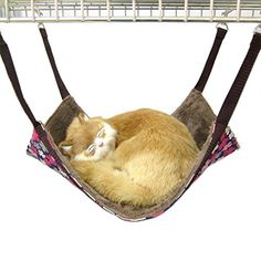 Alfie Pet by Petoga Couture - Rio Cat All-Season Hammock - Pattern: Brown Flower, Size: Small -- Continue to the product at the image link.(It is Amazon affiliate link) #f4f