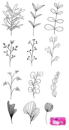 Embroidery Pattern of Floral Doodles from Bunte Galorie / Lettering and Tangles. Image Only. jwt
