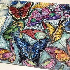 Muito maravilhoso! @Regrann from @rpenze -  Paraíso Tropical - #editorasextante #milliemarotta #artecomoterapia #staedtler #mystaedtler #mondeluz72 #milliemarottabooks #Regrann #paraisotropical #tropicalwonderland #livrodecolorir #coloringbook #artecomoterapia #lapisdecor #colourpencil #artthérapie  #coloring #coloriage