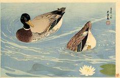 Ducks(1920) - Goyo Hashiguchi