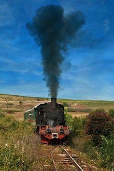 keskenyvágányú vasút...a gőzös... Sight & Sound, Steam Locomotive, Romania, Past, Trains, Past Tense
