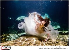 Start planning your next vacation this and visit the best in the and for and - Cancun, Tulum, Underwater Photography, Professional Photography, Riviera Maya, Diving, Exploring, Vacation, Studio