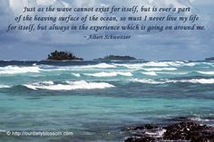 quotes about the ocean | Sayings, Quotes: Albert Schweitzer | Photo Quoto