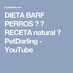 DIETA BARF PERROS ❤ ★ RECETA natural ★ PetDarling - YouTube