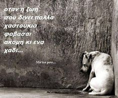 Greek Quotes, Don't Give Up, Looking Back, Picture Quotes, Favorite Quotes, Personality, Believe, Wisdom, Messages