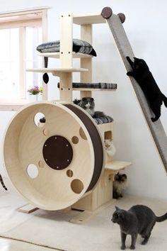 Turbo needs this!  lol