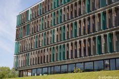New Danish Business School