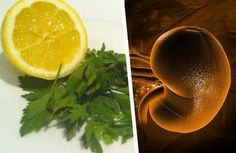 Remède au persil et au citron pour nettoyer les reins - Améliore ta Santé