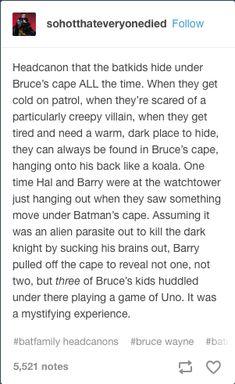 Bat family: Bruce's cape Oh my god Im Batman, Batman Robin, Batman Meme, Batman Stuff, Marvel Dc Comics, Marvel Avengers, Dorkly Comics, Dc Memes, Funny Memes
