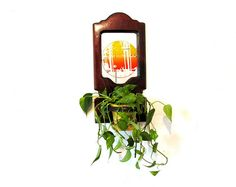 Vintage Wall Hanging Houseplant Holder with Decorative Mirror