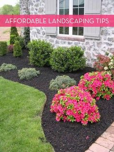 Black mulch added the beauty of landscaping and gardening idea.