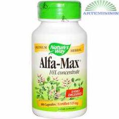 Alfalfa, 10X ekstrakt
