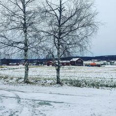 En liten snabb tillbakablick till en härlig vinterdag i Umeå med Sägen! #sägenontour Ikväll klockan 19:00 intar vi St Agnes kafé i Göteborg.