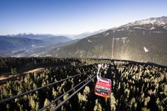 Stunning views, loads of activities and tasty dining... There is so much behind the PEAK 2 PEAK Alpine Experience. Find out more here:  http://www.whistlerblackcomb.com/events-and-activities/summer-activities/peak-2-peak-gondola.aspx Photo: Robin O'Neill