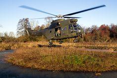 https://flic.kr/p/NmQxxi | Eurocopter Puma HC2 - ZJ956 - RAF | LFA1 | Vortex 002