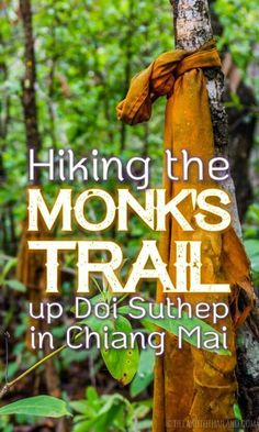 Everything you need to know to hike the monk's trail to the hidden Wat Pha Lat on Doi Suthep. Chiang Mai, Thailand Tieland to Thailand Koh Phangan, Ko Samui, Thailand Destinations, Thailand Vacation, Thailand Travel Guide, Asia Travel, Solo Travel, Travel Destinations, Krabi