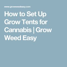 How to Set Up Grow Tents for Cannabis | Grow Weed Easy