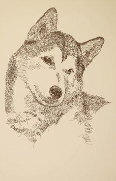 79 Charcoal Dog Drawings Ideas Husky Drawing Animal Drawings