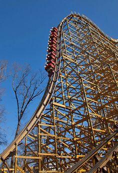 254 Best Rollercoasters Images Amusement Park Rides Roller