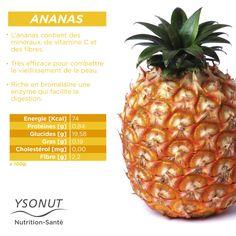 L'#Ananas, on en raffole ! Connaissez-vous tous les #bienfaits de ce #fruit exotique ? Fruit Nutrition, Sports Nutrition, Nutrition Tips, Health And Nutrition, Health Tips, Health And Fitness Articles, Health Fitness, Clean Recipes, Healthy Recipes