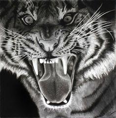 Love this tiger #illustration by Ihab Mardini, via Behance