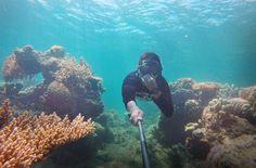 Freediving around the coral of Karimunjawa