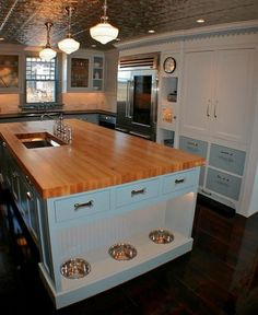 Huge kitchen with built-in dog food bowls :-) Might not work with food aggressive pups though...