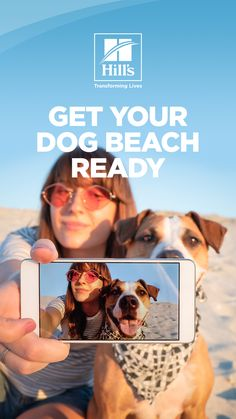 Are you planning to take your new pup to the beach for the first time? As the weather starts to heat up, you may be excited to take them — but you may not be sure what to expect. Chances are you've heard of dog-friendly beaches, but do you know what this means? Kitten Food, Cat Food, Loyal Dogs, Puppy Food, Dog Beach, Beach Ready, Do You Know What, Dog Care, Dog Friends