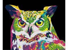«Радужная сова» Картина по номерам, картина-раскраска по номерам, раскраска по номерам, paint by numbers, купить картину по номерам - Zvetnoe.ru - картины по номерам, алмазная мозаика