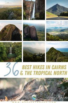 Cairns hikes: A complete list of the best hikes in Cairns. From rainforest waterfall tracks to lush tropical bushwalks, this is the most comprehensive Cairns and Tropical North hiking guide you will find. Coast Australia, Queensland Australia, Australia Travel, Amazing Destinations, Travel Destinations, Budget Travel, Travel Tips, Hiking Guide, Airlie Beach