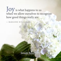 Recognize how good things really are by Marianne Williamson with article by Kristi Ling