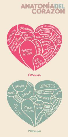 Aquí #Infografia Anatomía del corazón femenino y masculino, míralo y me dices que tal? @diana galindo