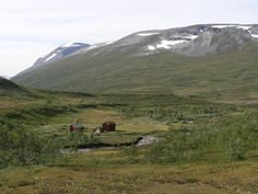 Dovrefjell - Norway