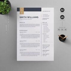 Resume Layout, Resume Format, Resume Cv, Free Resume, Business Resume, Resume Tips, Cv Finance, Basic Resume, Simple Resume