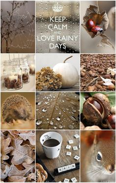 Good Evening Ladies, Tonight ( Sun, Oct, Let's create a Mood Board Titled '' Rainy Days'' Any pins will do relating to rain. If you could pin some Autumn rain pins. Rain Quotes are great also. Love the Purple board this week. Collages, Autumn Cozy, Autumn Fall, Hello Autumn, Autumn Inspiration, Inspiration Boards, Happy Fall, Fall Season, Rainy Days