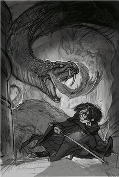 The Book Addicted Girl: Celebrating The New Harry Potter Covers Blog Tour: Chamber Of Secrets!