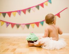 Hannah's 1st Birthday Photo Inspiration // cake, tutu and bunting