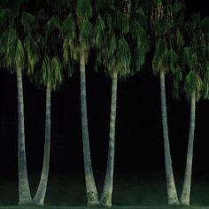 sam-irons-landscape-photography-2