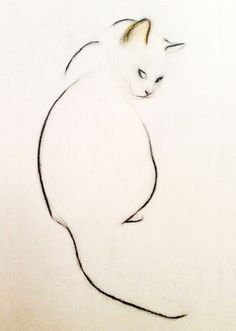 minimalist cat outline; simplicity