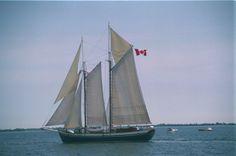 Kingston ONTARIO CANADA Portsmouth Harbour, Kingston Ontario, O Canada, Leaving Home, Ottawa, Boating, Moonlight, Toronto, Sailing