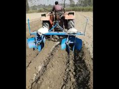 Best way to plant suger cane - YouTube