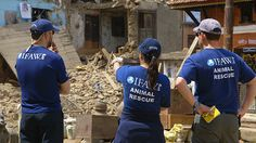 IFAW's animal rescue team is currently responding to animals in need following Nepal's devastating 7.8 earthquake and today's 7.1 magnitude second quake. The team is providing food, water, medicine and veterinary care to dogs, cats, backyard farm animals and livestock in the affected areas.