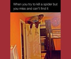 Spiders and bugs creeping and crawling all over your home is a nightmare. Hire professionals to get rid of them, we can help you choose a licensed #PestControl company in your area https://www.provilink.com/