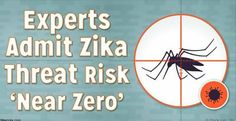 Amidst growing fear-based propaganda warning of the threat of Zika virus comes a quiet admission from health officials in Brazil: Zika alone may not be responsible for the rise in birth defects that plagued parts of the country. While there is some evidence suggesting Zika virus may be linked to...More